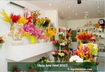 Shop hoa tươi BMT