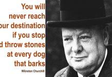 Bạn sẽ không bao giờ đạt đến đích nếu bạn cứ dừng lại và ném đá vào mỗi con chó