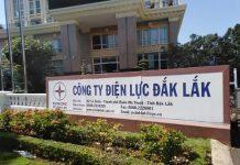 công ty điện lực Đắk Lắk